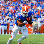 FB Hunter Joyer rushes downfield.  Gators vs Toledo.  8-31-13.