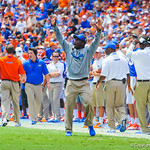Gator coaches call in the play.  Gators vs Toledo.  8-31-13.