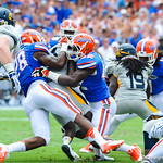 DB Keanu Neal and LB Jeremi Powell tackle the Toledo RB.  Gators vs Toledo.  8-31-13.