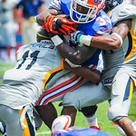 RB Mack Brown runs into the Toledo defense.  Gators vs Toledo.  8-31-13.
