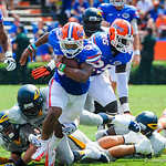 RB Mark Herndon rushes downfield.  Gators vs Toledo.  8-31-13.