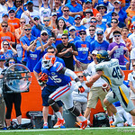 FB Ajagbe Gideon runs down the sideline. Gators vs Toledo.  8-31-13.