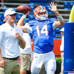 QB Chris Wilkes.  Gators vs Toledo.  8-31-13.
