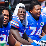 The gators wath on from the bench.  Gators vs Toledo.  8-31-13.