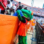 Alberta stops to greet a young fan.  Gators vs Toledo.  8-31-13.