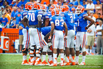The gtor offense huddles up.  Gators vs Tennessee Volunteers.  September 21, 2013.