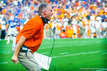 Gator defensive coordinator D.J. Durkin ecstatic as his gator defense comes up the fumble.  Gators vs Tennessee Volunteers.  September 21, 2013.