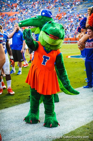 Gators vs Tennessee.  September 21, 2013