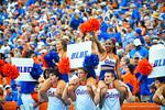 The Florida Gator cheerleaders cheer on their football team.  Gators vs Tennessee Volunteers.  September 21, 2013.