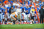 The gator sideline and gator fans watch on as QB Tyler Murphy sprints downfield.  Gators vs Tennessee Volunteers.  September 21, 2013.