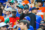 It isn't Halloween yet but it looks like Batman and Robin decided to make an appearance at the game.  Gators vs Tennessee Volunteers.  September 21, 2013.