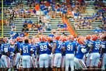 The Gator football team meets at midfield.  Gators vs Tennessee Volunteers.  September 21, 2013.