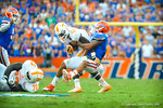 LB Anotnio Morrison makes the tackle on Tennessee RB Marlin Lane.   Gators vs Tennessee Volunteers.  September 21, 2013.