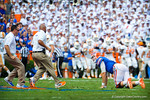 The florida gator staff run out to an injured Jeff Driskel laying on the field.  Gators vs Tennessee Volunteers.  September 21, 2013.