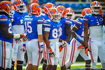 The Florida Gator wide receivers take the field for warm ups for the Tennessee game.  Gators vs Tennessee Volunteers.  September 21, 2013.