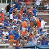 Fans celebrate a goal during the Florida Gators' 14-7 win against the Northwestern Wildcats in the ALC Championship on Saturday, May 5, 2012, at Donald R. Dizney Stadium in Gainesville, Fla. / Gator Country photo by MIke Capshaw