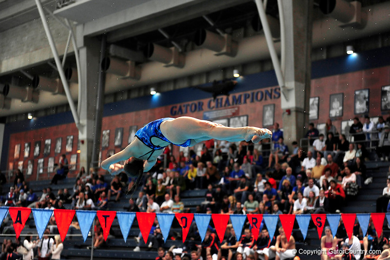 (Casey Brooke Lawson / Gator Country) UF divers compete during University of Florida's swim meet against Virginia in Gainesville, Fla., on January 7, 2009.
