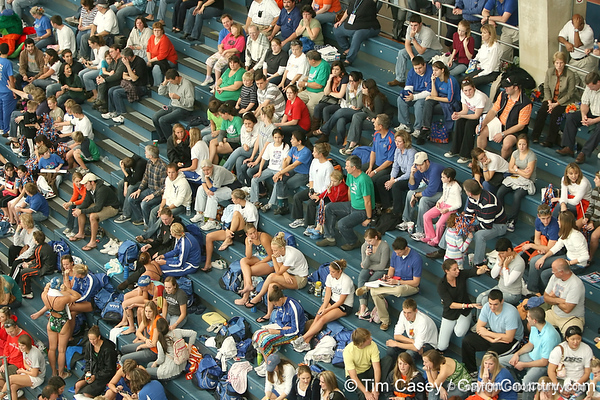 photo by Tim Casey<br /> <br /> Fans watch from the stands during the Gators' final home swimming and diving meet of the season on Saturday, January 31, 2009 at the Stephen C. O'Connell Center in Gainesville, Fla.