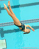 photo by Tim Casey<br /> <br /> competes in the 3 meter diving competition during the Gators' final home swimming and diving meet of the season on Saturday, January 31, 2009 at the Stephen C. O'Connell Center in Gainesville, Fla.
