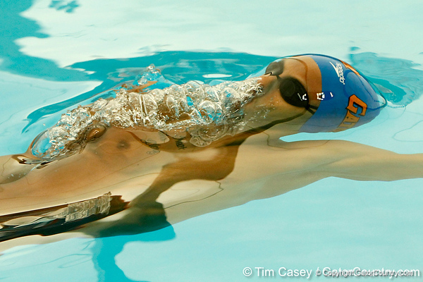 Florida freshman Austin Ringquist competes in the men's 100-yard backstroke during the Gators' meet against the Florida Atlantic Owls on Saturday, January 14, 2012 at the Stephen C. O'Connell Center Natatorium in Gainesville, Fla. / Gator Country photo by Tim Casey