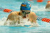Florida sophomore Julia Treible competes in the women's 100-yard breaststroke during the Gators' meet against the Florida Atlantic Owls on Saturday, January 14, 2012 at the Stephen C. O'Connell Center Natatorium in Gainesville, Fla. / Gator Country photo by Tim Casey