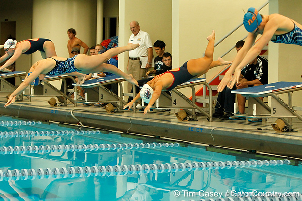 FAU swimmer Miranda Uhl competes in the women's 100-yard freestyle during the Owls' meet against the Florida Gators on Saturday, January 14, 2012 at the Stephen C. O'Connell Center Natatorium in Gainesville, Fla. / Gator Country photo by Tim Casey