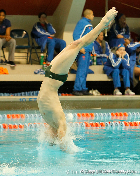 Florida senior David Springfels competes in 3-meter diving during the Gators' meet against the Florida Atlantic Owls on Saturday, January 14, 2012 at the Stephen C. O'Connell Center Natatorium in Gainesville, Fla. / Gator Country photo by Tim Casey