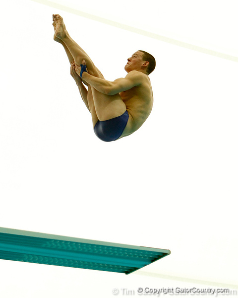 Florida junior Sean Saley competes in 3-meter diving during the Gators' meet against the Florida Atlantic Owls on Saturday, January 14, 2012 at the Stephen C. O'Connell Center Natatorium in Gainesville, Fla. / Gator Country photo by Tim Casey