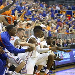 Florida bench during the Gators 83-52 win over Missouri on January 19, 2013 at the Stephen C O'Connell Center in Gainesville, Florida. Gatorcountry photo by Curtiss Bryant