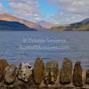 'Firkin Point' - Loch Lomond, Scotland