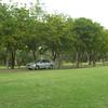 Conley Park