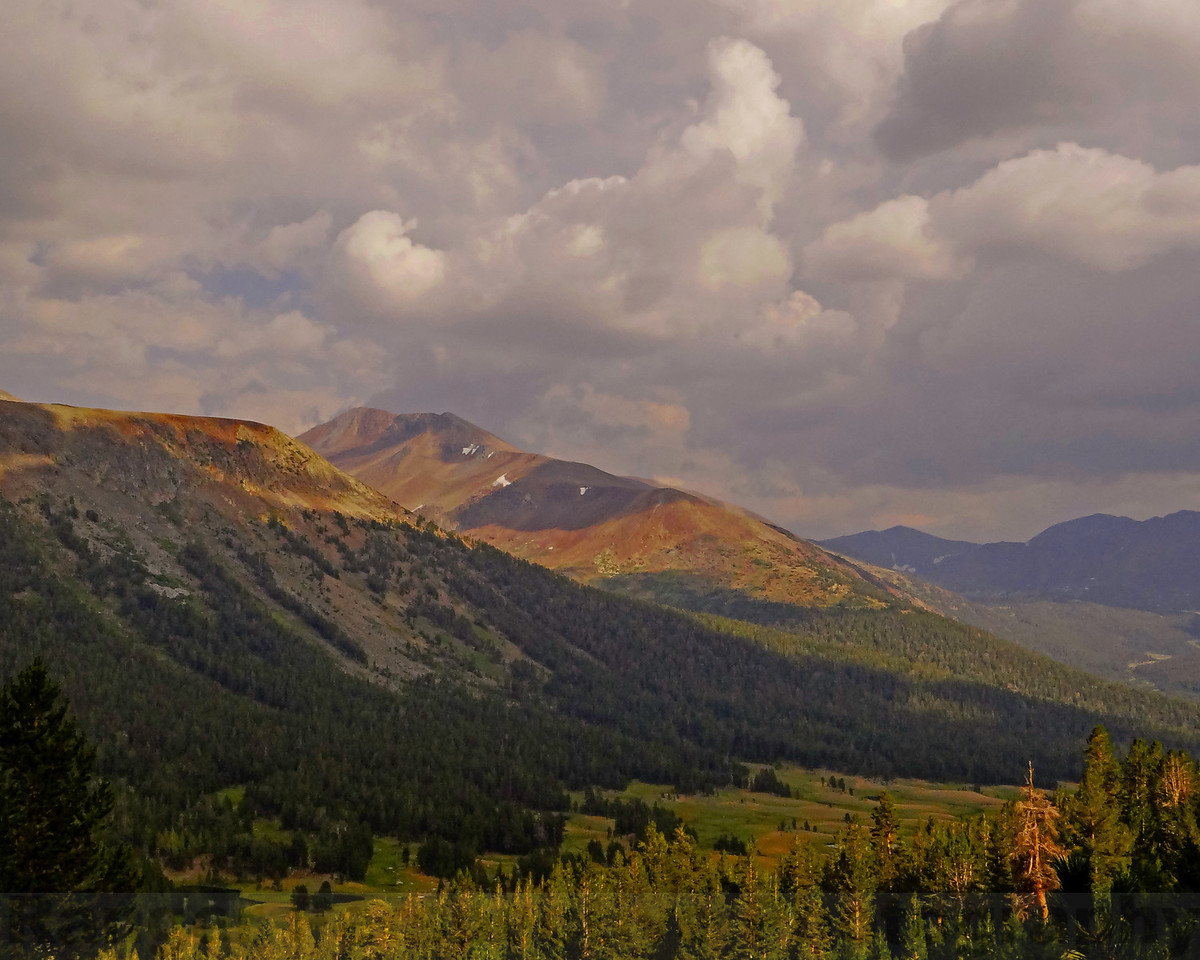 Mount Gibbs and Dana Meadows