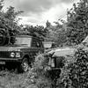 Range Rover graveyard, Gayton, Northamptonshire