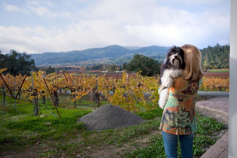 What grape vines, Mom?