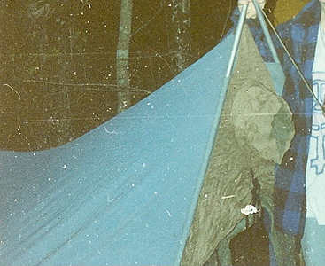 Even though I lived in this tent for 10 years, I have very few photos of the thing.  It's the North Face Tuolumne A-frame as shown with the tunnel door and the little tunnel vent. It got me thru most of the 1980's.