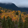 Color on the Kancamagus
