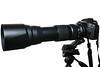 Camera Canon EOS 7D; Lens Tamron SP 150 600mm f5-6.3 DI VC USD
