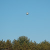 Soccer Ball in Flight, Amherst College Field, Amherst, MA