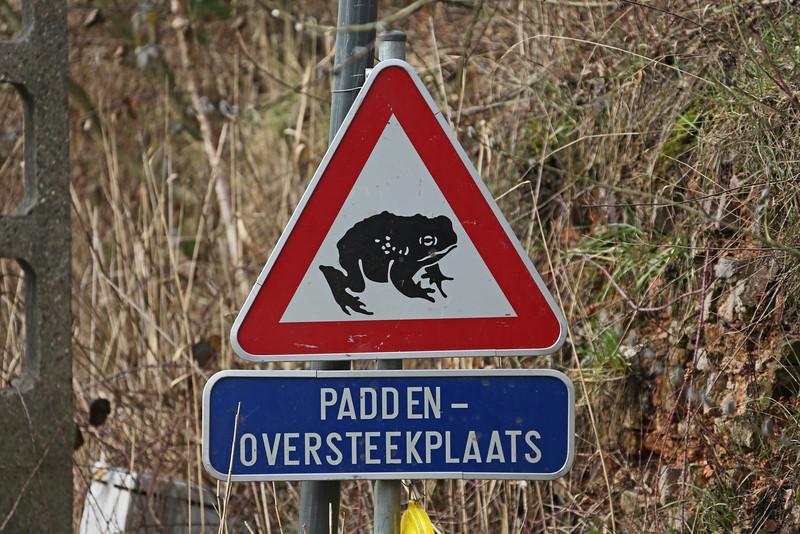 Steendorp - Scouselestraat - Paddenoverzet (08/03/2013)