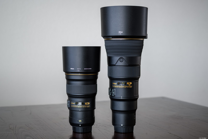 300mm f/4 PF vs. 500mm f/5.6 PF