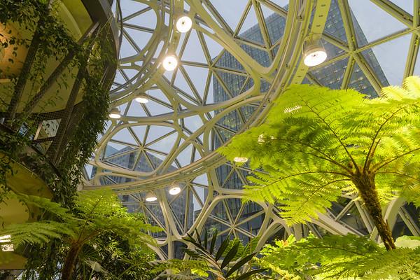 Amazon Spheres opening