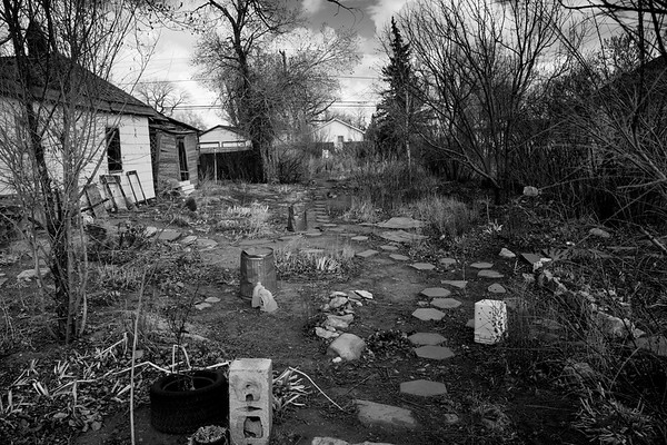 Downtown Laramie Garden: Springtrime