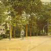 G0463 <br /> Links van de lantaarnpaal zien we een lichtgekleurde villa. Deze villa werd gebouwd in 1881 voor J. Kruijff, die het huis noemde naar zijn echtgenote Nella. De latere bewoner K. Klijn herdoopte de villa in 'Vredesteyn'. Tijdens de oorlogsjaren bouwden de Duitsers bunkers in de tuin. Het huis heeft jarenlang dienstgedaan als pension. Ook de fam. P. van Reisen heeft hier jarenlang gewoond. Thans heeft notaris Schrama het pand grondig laten restaureren. Foto: 1904.