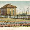 G0061 <br /> We zien de zuidelijke zijkant en de achterzijde van de dubbele villa, die voor de bloembollenhandelaar Henri Roozen in 1890 werd gebouwd. Links staat de bollenschuur van de fa. Roozen & Zn, later van de fa. Van der Voort en daarna van Fred de Meulder. Tot ca. 2010 was daar de kistenfabriek van M. Bakker & Zn gevestigd. De bomen die langs de Hoofdstraat staan, lopen achterlangs het huis.<br /> De ene helft van de villa (het dichtste bij de bollenschuur) heette 'Bloomfield' en werd volgens de Kieslijst van 1918/19 bewoond door de fam. L.B. Roozen. De andere helft heette 'Zomerzorg' en werd bewoond door de fam. A.C. Roozen. Later heeft het huis één naam gekregen: Twin's Home.<br /> Rechts van het huis staat in de verte een boerderij: Knorrenburg, die in 1907 werd gesloopt. De boerderij was vanaf de Hoofdstraat te bereiken via een pad dat liep waar nu de Zuiderstraat ligt. De boerderij stond ongeveer op de plaats van de huidige Philippostraat, vlakbij het einde van de Zuiderstraat. Een van de bewoners van de boerderij was J.A. van der Voort. Hij ging werken bij C.J. Speelman, achteraan het Speelmanlaantje. Van der Voort werd door Speelman opgeleid tot bollenreiziger. Van het (snel) verdiende geld kocht hij in 1919 het grote huis op de foto en ging er ook wonen. Waarschijnlijk is het huis kort daarna 'Twin's Home' gaan heten. Jarenlang heeft de naam in een fraaie gevelsteen op de voorgevel geprijkt.<br /> <br /> Foto: 1903.
