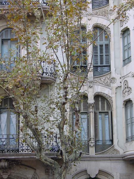 2001-1118-DSC03009-carrer_de_valencia239