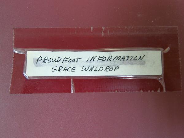 Proudfoot Genealogy from Grace Waldrop