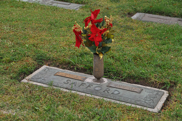 2009 11.12 Skyway Cemetery Palmetto, FL