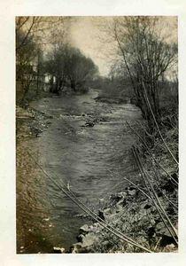 Creek scene.