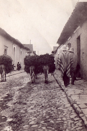 Armstrongs in South America 1918 - 1925