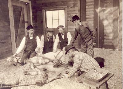 Veterinarian Doctors Schuyler, Moyle, Jackson & Allen